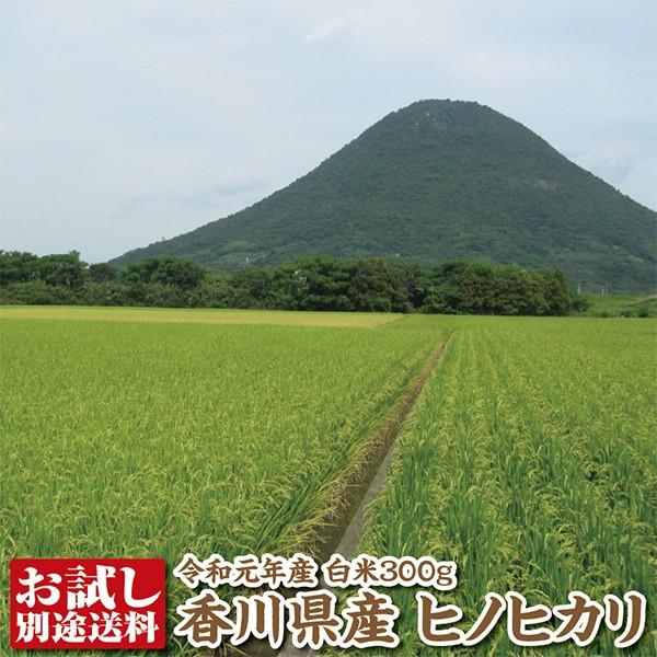 【令和元年産】香川県産ヒノヒカリ白米300g【ひのひかり】【送料別途必要】