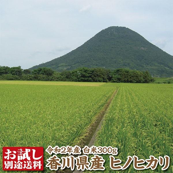 【令和2年産】香川県産ヒノヒカリ白米300g【ひのひかり】【送料別途必要】
