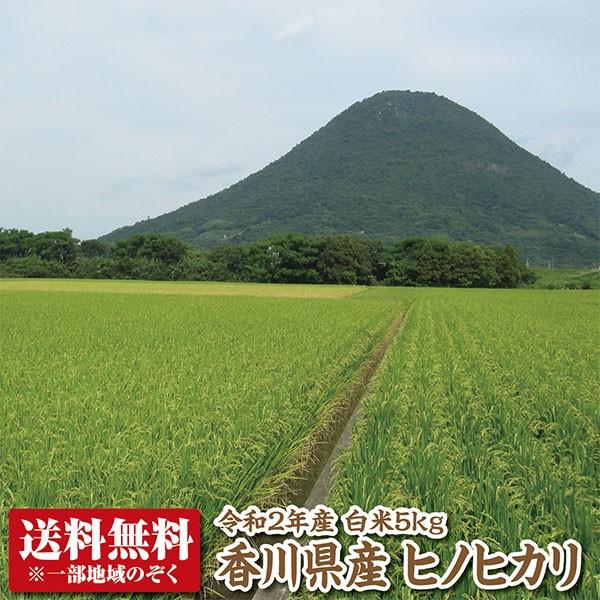 【令和2年産】【送料無料】香川県産ヒノヒカリ白米5kg【ひのひかり】
