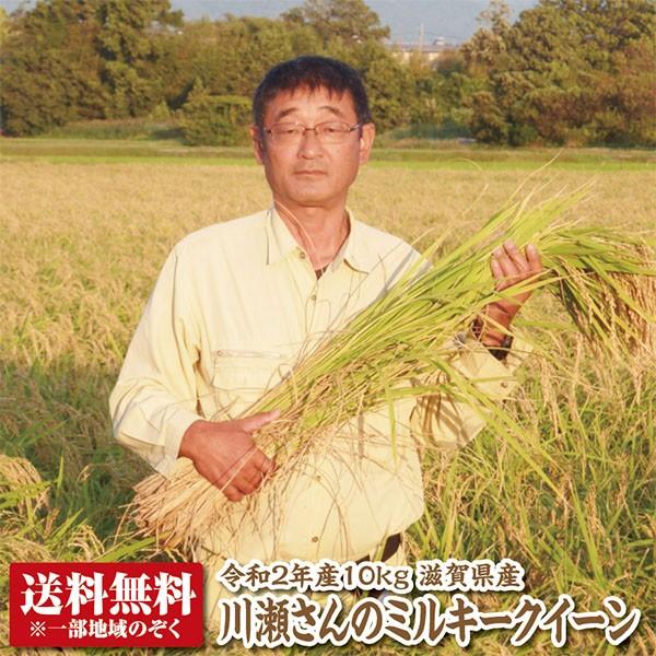 【新米】【送料無料】【令和2年産】滋賀県産川瀬さんのミルキークイーン10kg【特別栽培米】【生産者限定米】