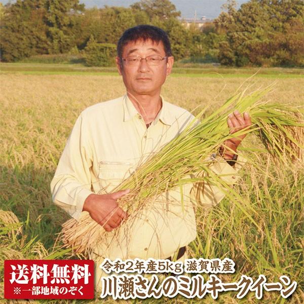 【新米】【送料無料】【令和2年産】滋賀県産川瀬さんのミルキークイーン5kg【特別栽培米】【生産者限定米】