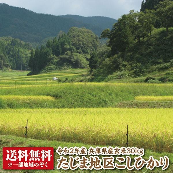 【令和2年産】兵庫県たじまコシヒカリ玄米30kg【送料無料】【こしひかり】【精米料無料】