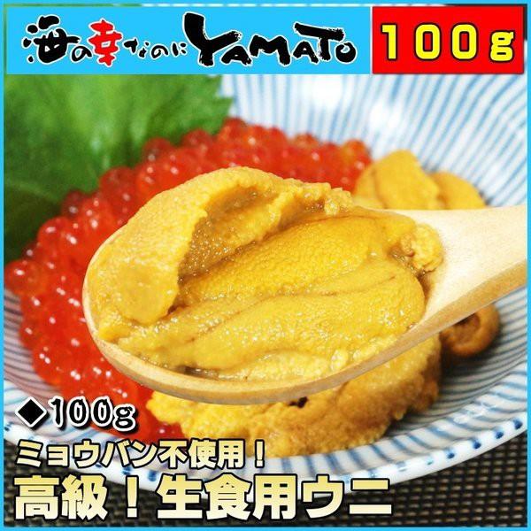 天然生ウニ100g ミョウバン不使用完全無添加 うに 雲丹 海鮮丼 寿司 お歳暮 お年賀 ギフト 60代 70代 内祝い グルメ 贈答 海鮮