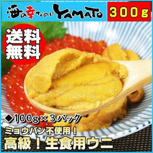 天然生ウニ100g×3パック ミョウバン不使用完全無添加 うに 雲丹 海鮮丼 寿司 お歳暮 お年賀 ギフト 60代 70代 内祝い グルメ 贈答 海鮮