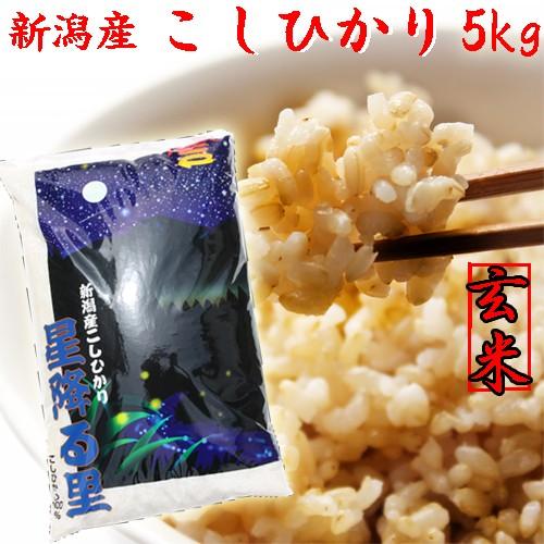 【コシヒカリ 玄米5kg】新潟産コシヒカリ5kg 玄米《特A 令和元年 2019 お米 5kg コシヒカリ 5キロ 美味しいお米》