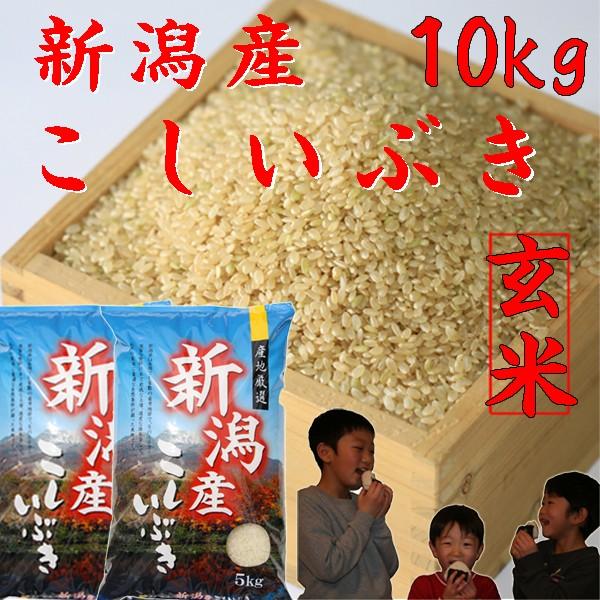 新米【玄米10kg】令和2年【玄米 10kg】新潟県産 こしいぶき10kg 《玄米 令和2年 新米 お米10kg 2020年 安い玄米5キロ×2袋 美味しい