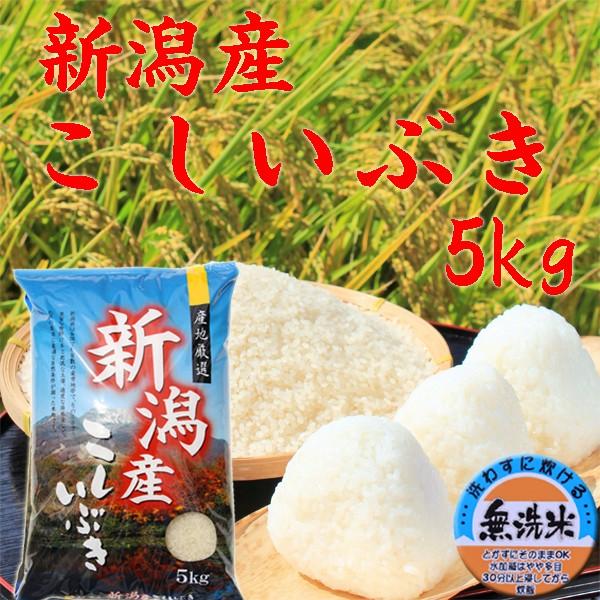 【無洗米 5kg】新潟産 こしいぶき 無洗米 5キロ 2019年《キャッシュレス5%還元 令和元年 無洗米5kg お米 5kg 安い 5キロ 美味しい