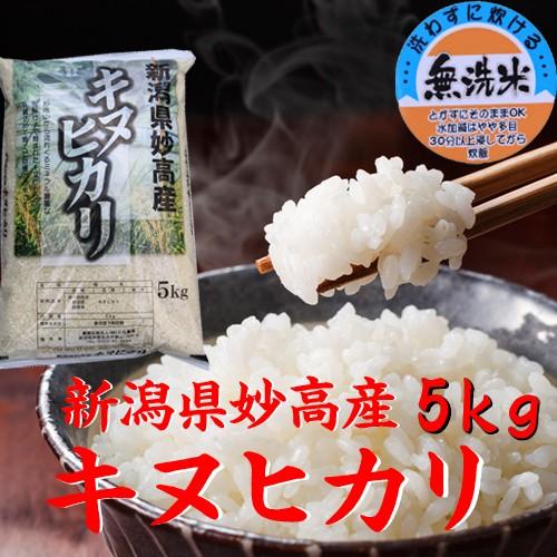 【無洗米 5kg】新潟県産 キヌヒカリ 無洗米5キロ 2019年《キャッシュレス5%還元 令和元年 無洗米5kg お米 5kg 安い 5キロ 美味