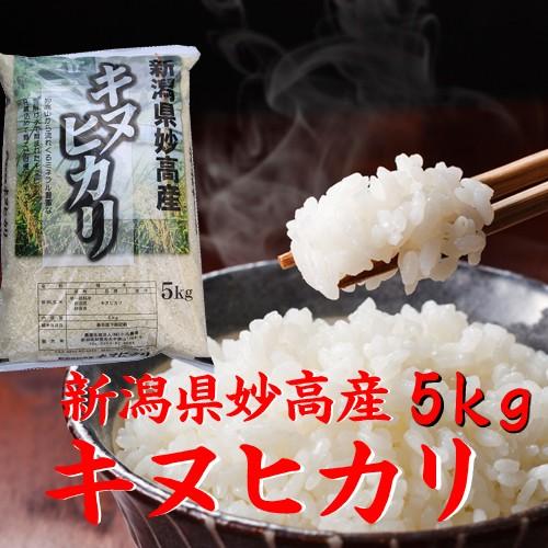 【新米 5kg】新潟産 キヌヒカリ5kg 令和2年 米5キロ 白米 分づき お米 5kg 安い 5キロ 美味しい米 新潟産米