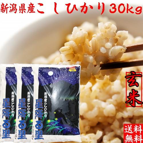 【コシヒカリ 玄米30kg】送料無料 新潟産コシヒカリ30kg (10キロ×3袋)「特A 玄米 お米 コシヒカリ30kg 玄米 30キロ」
