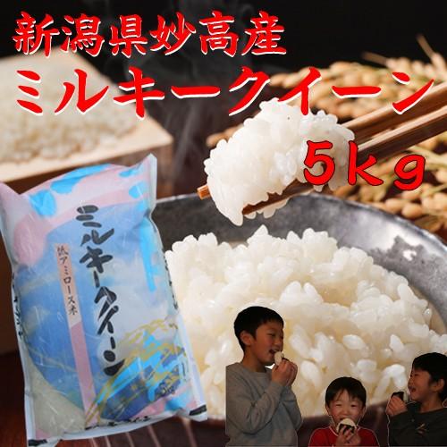 新米【ミルキークイーン5キロ】 新潟県産ミルキークイーン 令和元年 2019 みるきーくいーん5kg 白米 分づき