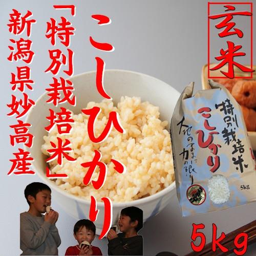 新米【特別栽培米 玄米5kg】新潟産コシヒカリ 特別栽培米5kg《新米 令和2年 2020 お米 5kg 高級米 5キロ 美味しいお米 お米玄米》