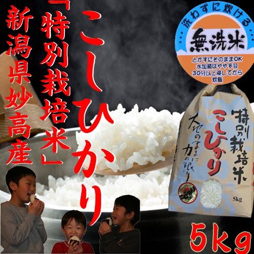 【特別栽培米 無洗米】新潟産コシヒカリ 特別栽培米コシヒカリ 5kg《特A 無洗米5キロ 令和元年 2019年 お米 5kg 高級米 5キロ 美味