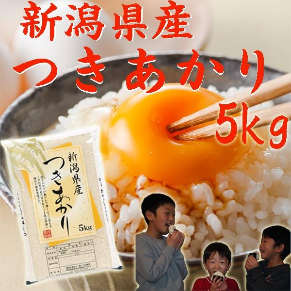 【お米 5kg】新潟産 つきあかり5kg(5キロ×1袋)令和元年《米5kg 米5キロ 白米 分づき お米 5kg 安い 5キロ 新潟米》