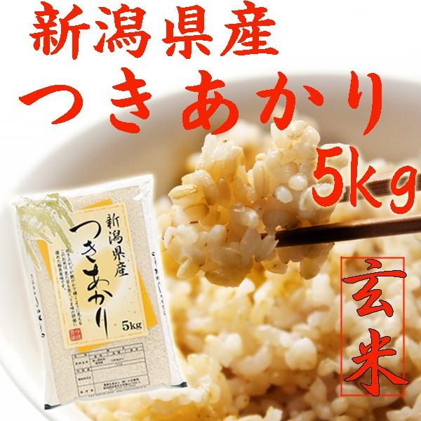 【玄米 5kg】新潟県産 つきあかり 玄米 5kg(5キロ×1袋)《キャッシュレス5%還元 令和元年玄米 2019 新潟県産玄米 お米 玄米5kg 安い 5