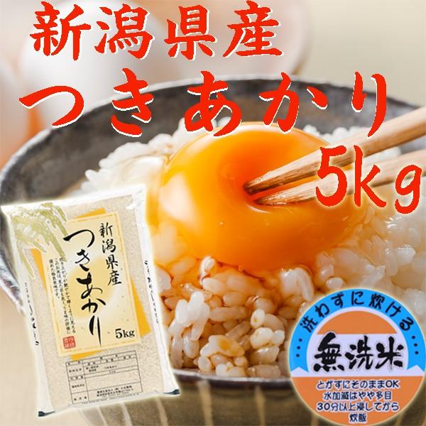 【無洗米 5kg】新潟県産 つきあかり 無洗米5kg(5キロ×1袋)《キャッシュレス5%還元 2019年産 令和元年産 お米 5kg 安い 5キロ 5kg