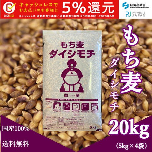 国産 もち麦 ダイシモチ 20kg (5kg×4袋)紫もち麦