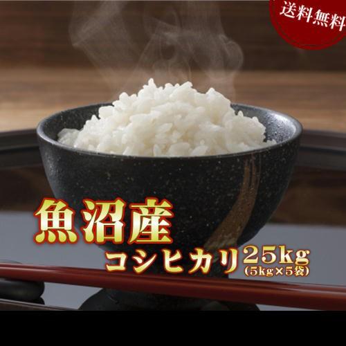 新米 令和2年産 25kg 魚沼産 コシヒカリ (5kg×5袋) お米 送料無料 北海道・沖縄は770円の送料がかかります。
