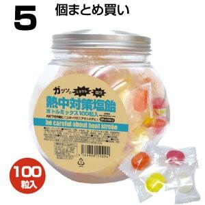 【 送料無料 】 5個 まとめ買い ボトルミックス 100粒入り 熱中飴 塩飴 賞味期限1年