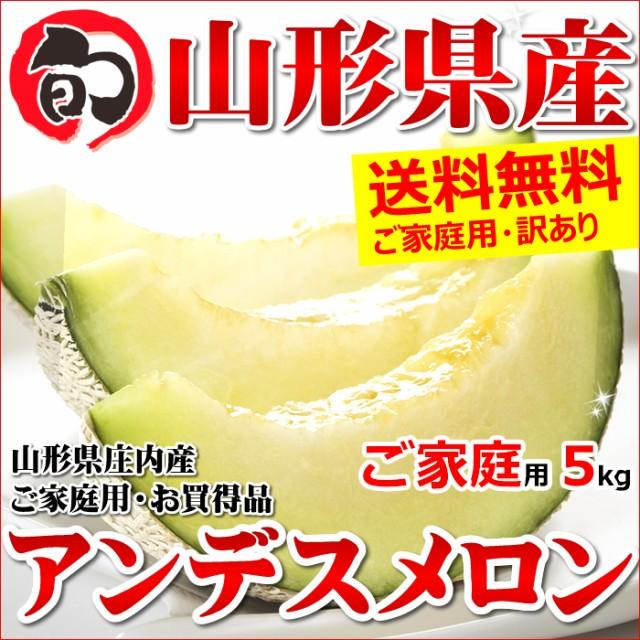 【7月上旬〜日時指定OK】山形県産 ご家庭用 アンデスメロン 5kg箱(3玉〜7玉入り)