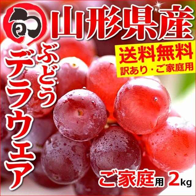 【8月中旬〜日時指定OK】山形県産 ブドウ デラウェア 2kg(ご家庭用/8房〜16房)
