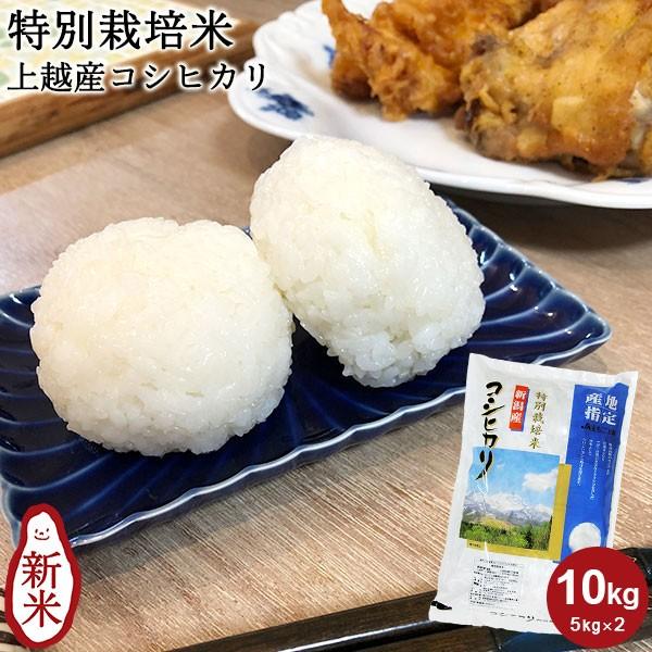 【新米】特別栽培米 上越産コシヒカリ 10kg(5kg×2) | お米 送料無料 新潟 減農薬 減化学肥料 ギフト 内祝い お返し お祝い 贈答品 贈り