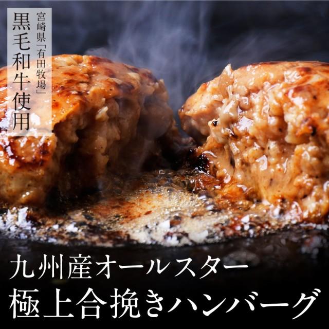 極上ハンバーグ 5個入りセット 送料無料 博多 福岡 中洲 敬老の日