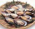 マルハニチロ)パーナ貝(片貝)1kg 【同梱・北海道・沖縄不可】【送料無料】
