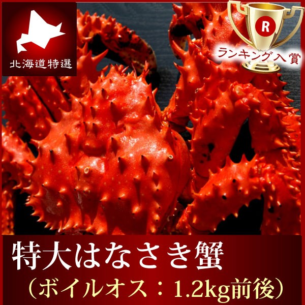 はなさき ハナサキ 送料無料『特選花咲蟹』(ボイル姿大1kg前後)特大 数量限定 タバラ たばら カニミソ 根室 はなさきがにカニ鍋 甲