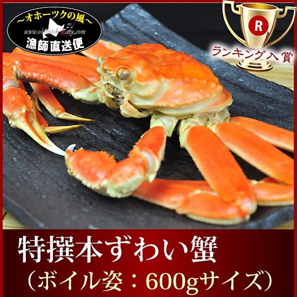 ズワイ ずわい 『ボイル本ずわい蟹:姿600g前後』ズワイガニ ずわいがに ズワイ姿 ギフトのし ギフト 贈答用