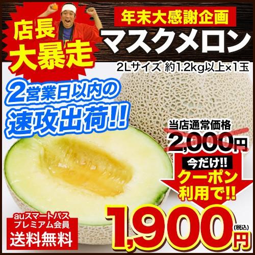 ■年末!大感謝■ 高級 マスクメロン 今だけクーポンで1 900円★ 名産地熊本より直送 約1.2kg以上 2L 2営業日以内出荷(土日祝除)