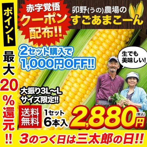 大雨に負けない!\2セットで1000円OFFクーポン有/すごあまこーん 6本(3L~L)約1.8kg-約2.1kg 送料無料 7月中旬-8月上旬頃出荷 朝採り ス