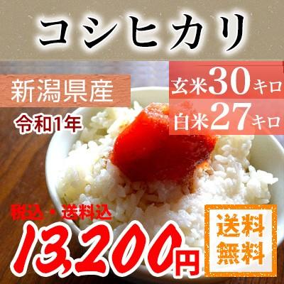 令和1産 新潟県産コシヒカリ 玄米30kg 又は 白米27kg 【送料無料】北海道・沖縄・一部離島を除く