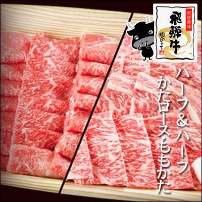 【肉のひぐち】バーベキューにおうち焼き肉にピッタリ!メガ盛りにハーフ&ハーフ 【送料無料】飛騨牛かたロース肉500g&もも・かた焼