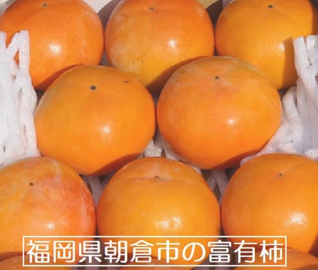 福岡県朝倉市 富有柿 2Lサイズ 約16個