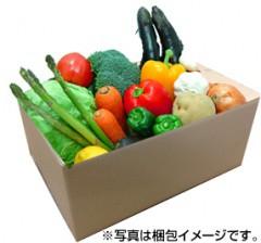 九州野菜よかもん基本10品目セット!(単身・お二人用)【産地直送】【クール便】