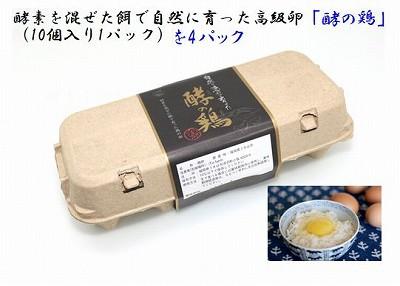 【送料無料】【福岡県うきは市】酵の鶏(こうのとり)10個入 4パックセット【iTo farm】産地直送 卵 たまご 濃厚