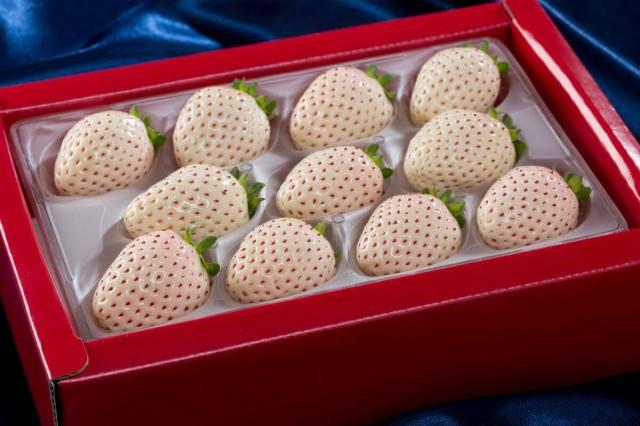佐賀県久保田町の高級ブランド苺 「パールホワイト」 2パック イチゴ 白いちご 苺 送料無料