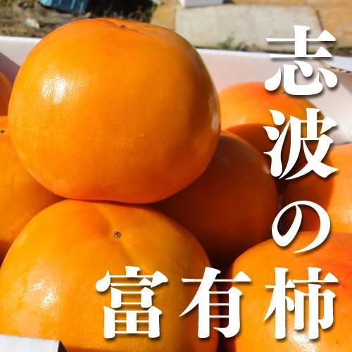 【送料無料】【ブランド柿】福岡県産志波柿 富有柿 2Lサイズ 約12個