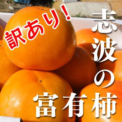 【送料無料】訳あり!志波柿 富有柿 M-2L混合 約11個 【ブランド柿】産地直送 朝倉市特産品