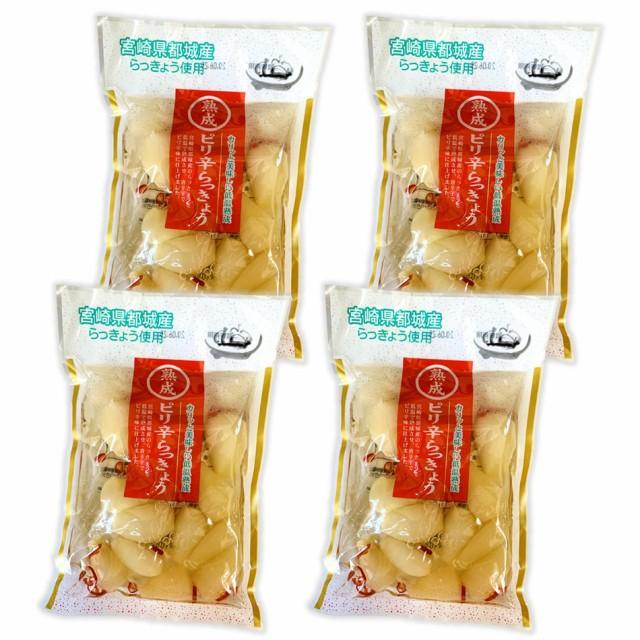 宮崎県都城産使用 熟成ピリ辛らっきょう4袋入 低温で熟成させ唐辛子でピリ辛味に仕上げました 送料無料 ポイント消化