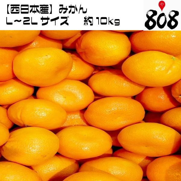 【西日本産】みかん L〜2Lサイズ 約10kg【常温便送料無料】(北海道沖縄別途送料加算)激甘/ミカン/蜜柑