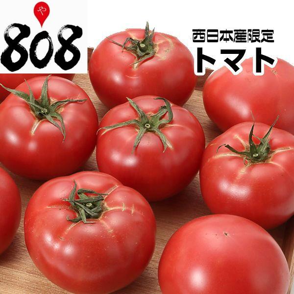 【送料無料】【西日本産】超ビッグサイズ トマト 1箱 12〜16玉入【北海道沖縄・離島等別途送料加算】/とまと/トマトジュース/トマトケ