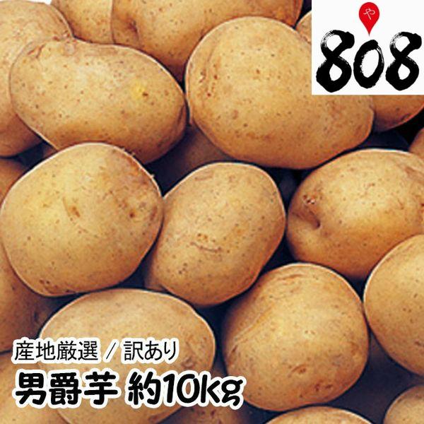 【翌日お届け】【送料無料】男爵芋 L〜2Lサイズ  1箱 約10kg(北海道沖縄別途送料加算)男爵いも/だんしゃくいも/じゃがいも/ジャガイ