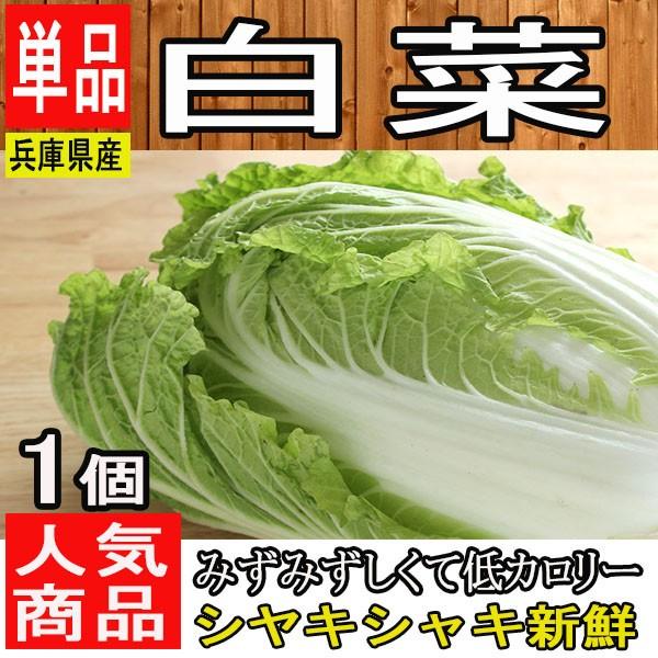 【兵庫県産】白菜 1個 約2kg【野菜詰め合わせセットと同梱で送料無料】【送料別】/敬老の日