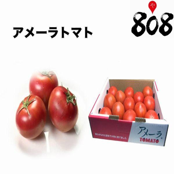 【送料無料】【静岡県/長野県産】とってもあま〜い 高糖度 アメーラトマト 12玉前後 1箱 約1kg(北海道沖縄別途送料加算)とまと/フルーツ