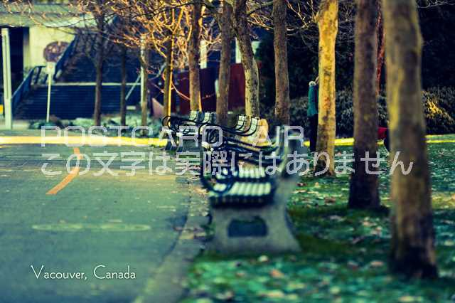 【カナダの観光地ポストカード】「 Vancouver Canada」バンクーバー緑の公園の葉書・ハガキ photo by MIRO