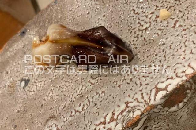 【日本のポストカードのAIR】 貝の葉書ハガキはがき photo by MIRO