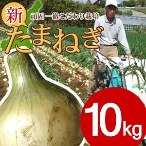 淡路島 特選 新玉ねぎ 10kg 送料無料 母の日 父の日 今井ファーム 国産 安心安全 産地直送 有機質肥料 たまねぎ タマネギ 採れたて 野菜