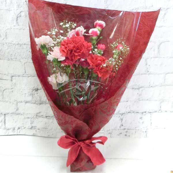 お届け期間が選べます 送料無料 生花 花束 カーネーションとかすみ草の花束 FL-MD-06-MD